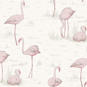 Flamingos, Contemporay – Cole & Son