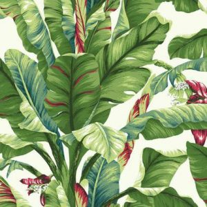Banana Leaf, Ashford Tropics – York