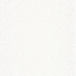 CASADECO – SO WHITE 4 OXFORD ABIGAIL