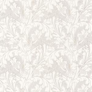 CASADECO – SO WHITE 4 OXFORD ELISABETH
