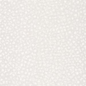 CASADECO – SO WHITE 4 ENCYCLOPEDIA2 BULLAE