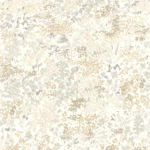 CASADECO – SO WHITE 4 FLORESCENCE HUNTINGTON