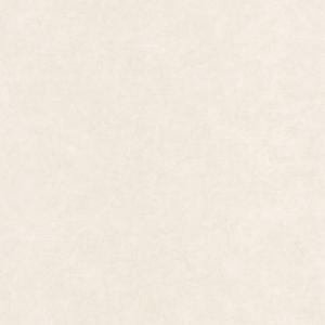 CASADECO – SO WHITE 4 NATSU WASHI